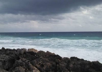 The shore in Cozumel