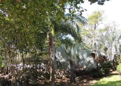 Paradise in Roatan, Honduras
