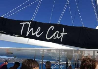 The Cat Catamaran - Norwegian Escape Cruise